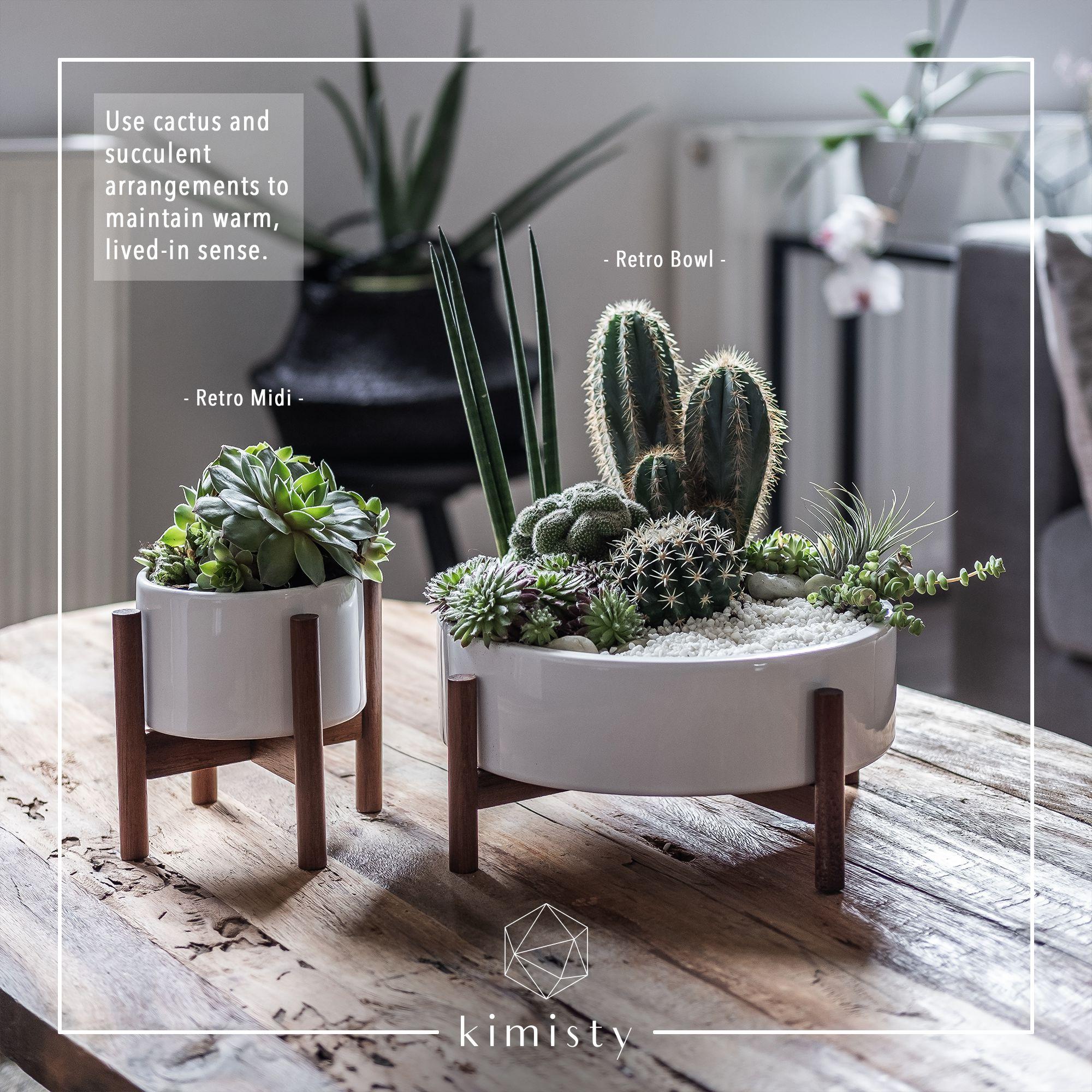 Retro Large Indoor Planter Pot Ceramic Succulent Planter Kimisty